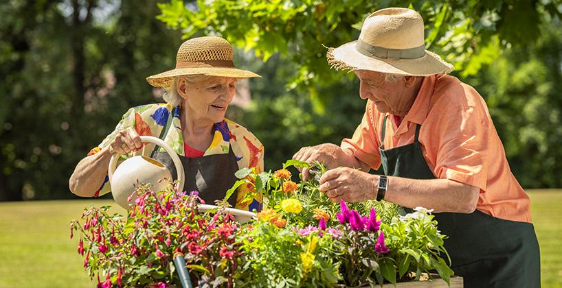 Maison de retraite atelier jardinage